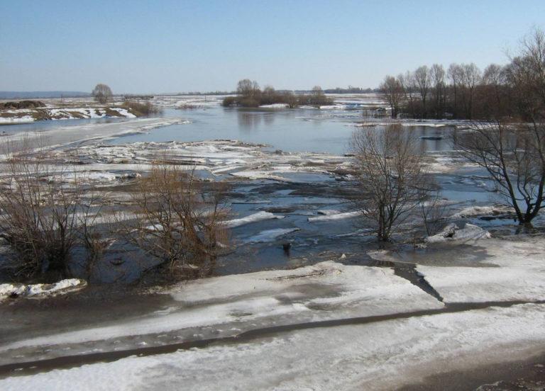 В Кургане у М.Чаусовского моста провели расчистку русла реки Тобол