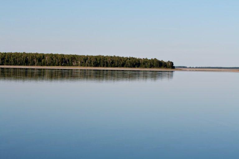 В Кургане на озере Левашово утонул мужчина
