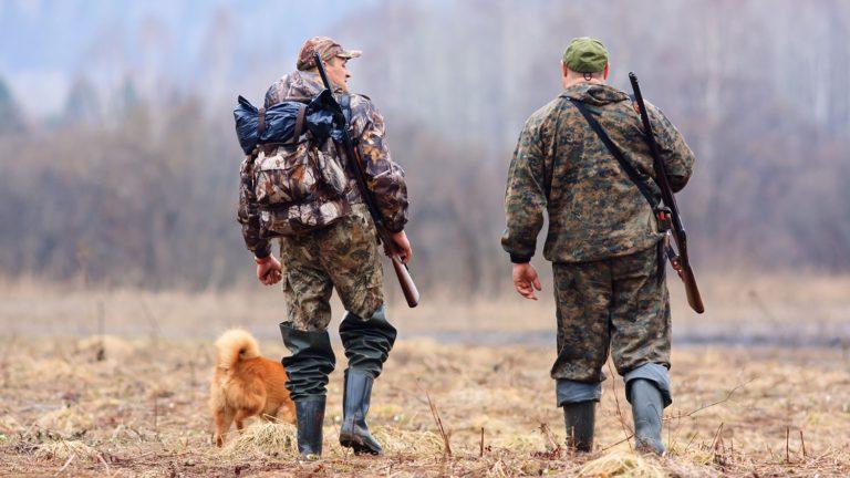 В Зауралье установлены лимиты на предстоящий сезон охоты