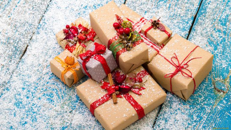 50 детей из Курганской области впервые получили подарки от губернаторской «Ёлки желаний»