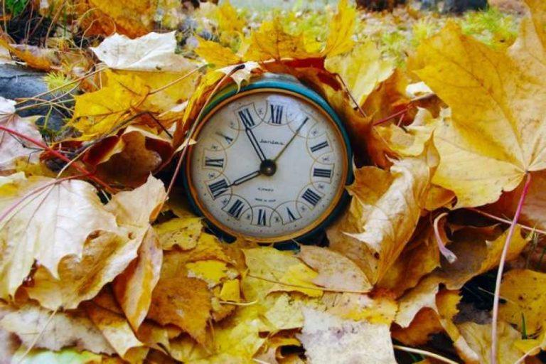 Осенние каникулы в школах Курганской области могут начаться раньше.
